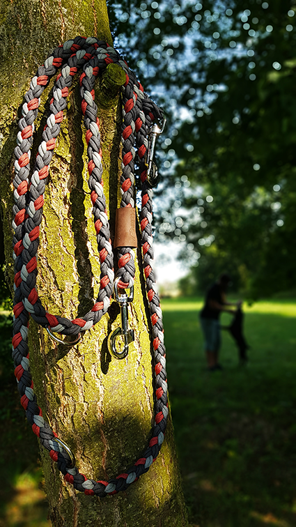 voditko-paracord-220cm-xl-strom